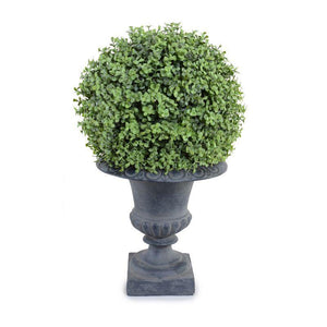 "11"" Boxwood Ball in Urn, 21""H"