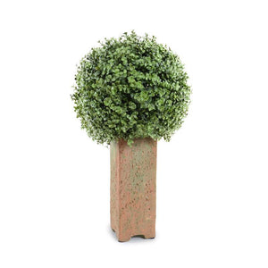 "11"" Boxwood Ball in Column Pot, 23""H"