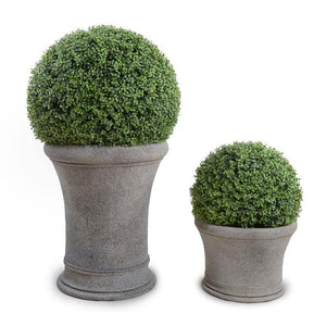 "15"" Boxwood Drum Topiary - New Growth Designs"