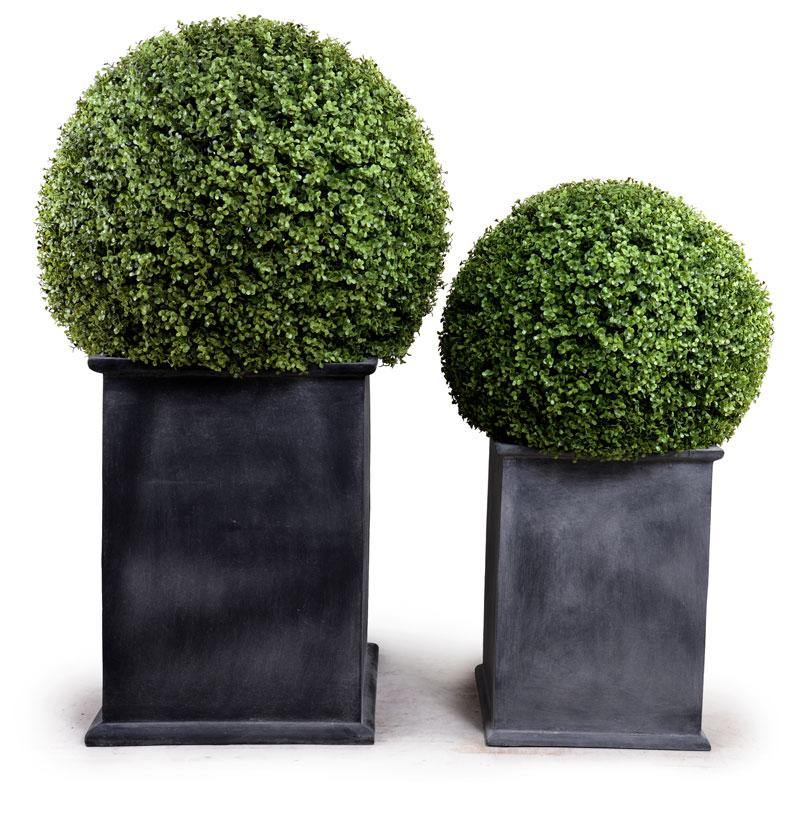 "28"" Boxwood Ball Topiary - New Growth Designs"
