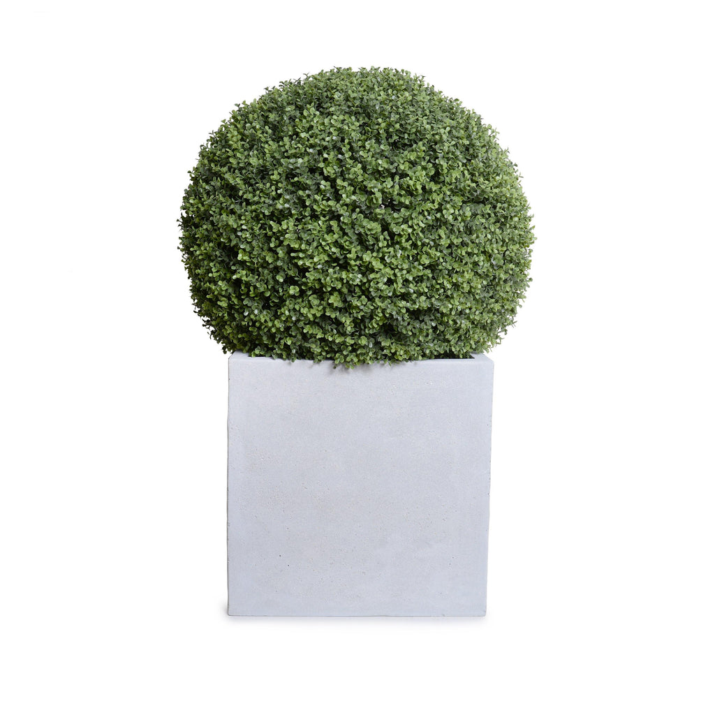 "28"" Boxwood Ball in Square Pot, 42""H"