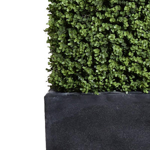 "42""L x 62""H Boxwood Hedge with planter"