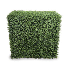 "42""L Boxwood Hedge (Extra Wide) - New Growth Designs"