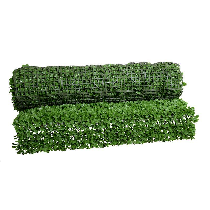 4' W x 8' H Peperomia Wall Mat (Roll)