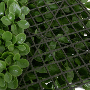 4' W x 8' H Peperomia Wall Panel (Roll)