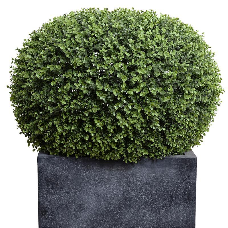 """Pumpkin"" Boxwood Shrub in Cube Fiberglass, 34""H - New Growth Designs"