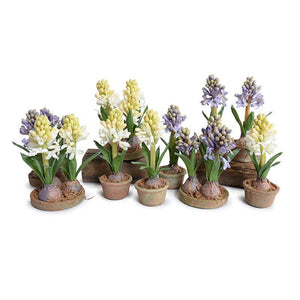 Hyacinth Mini Pot - Blue
