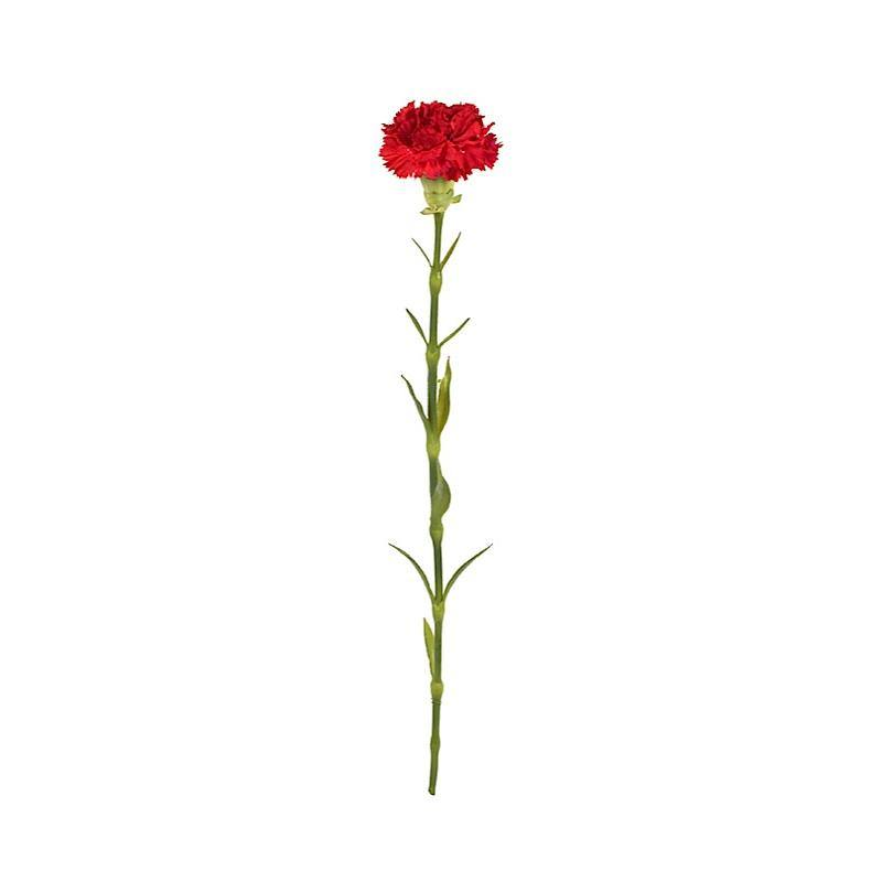 "Carnation Stem, 23"" L - Red"