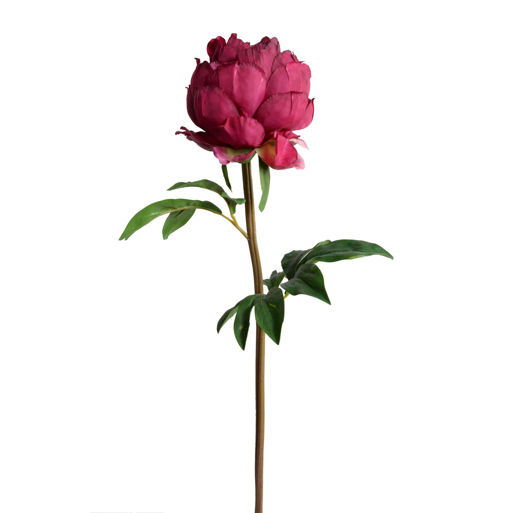 "Peony Stem with Leaves, 26"" - New Growth Designs"