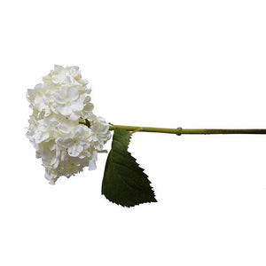 "Hydrangea Stem with Leaf, 18"" L - White - New Growth Designs"