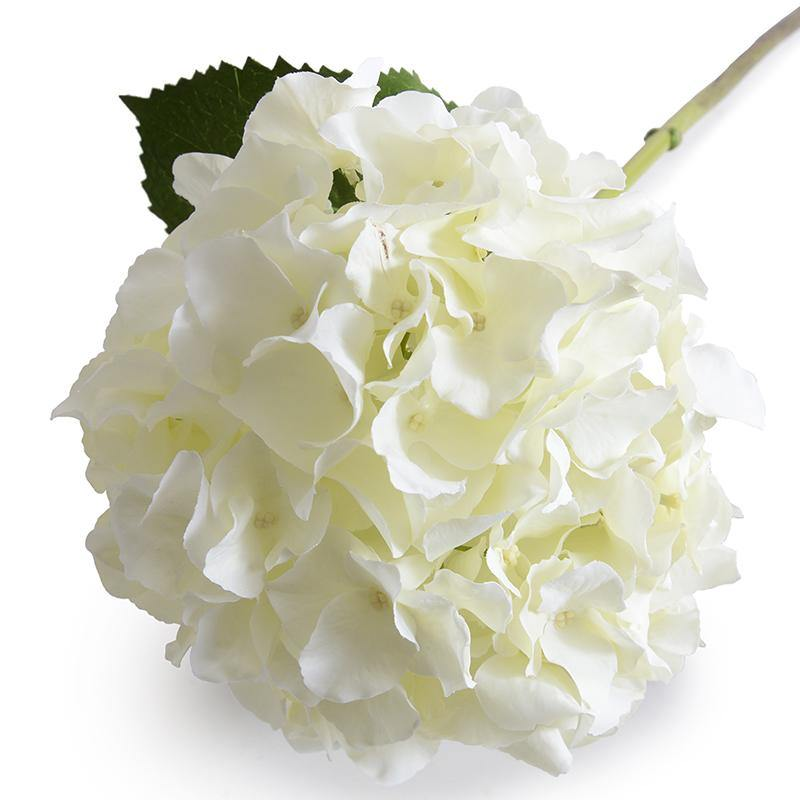 "Hydrangea Stem, 27"" L, Cream-white"