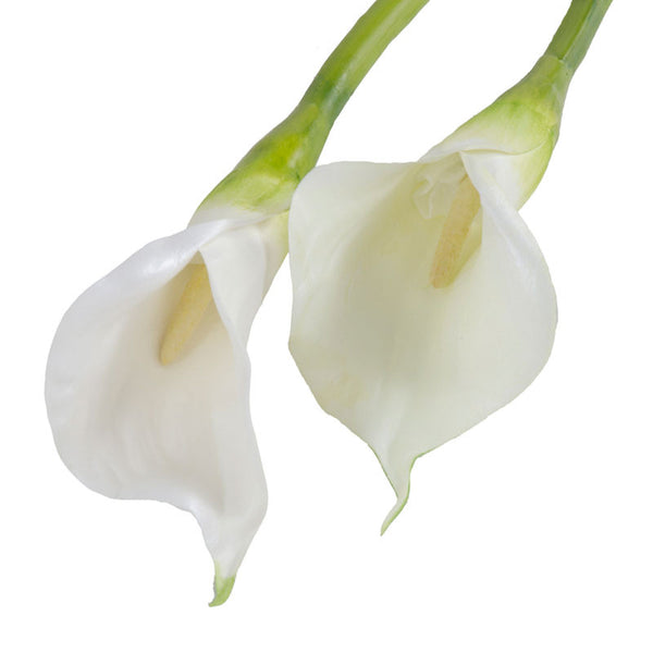 "Calla Lily Stem, White 30"" - New Growth Designs"