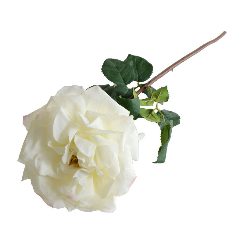 Rose Stem, White