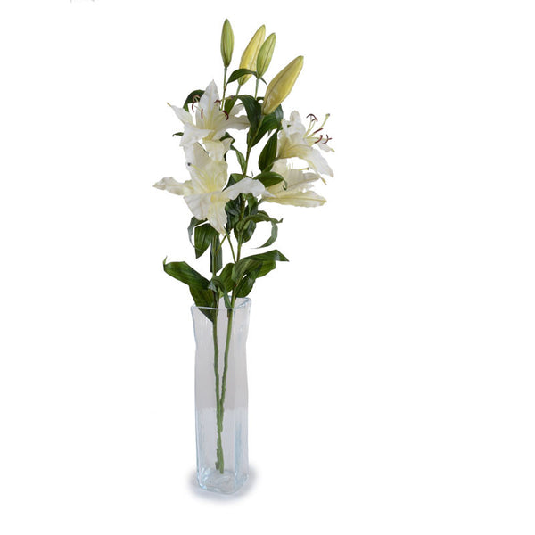 Casa Blanca Lily Spray - New Growth Designs