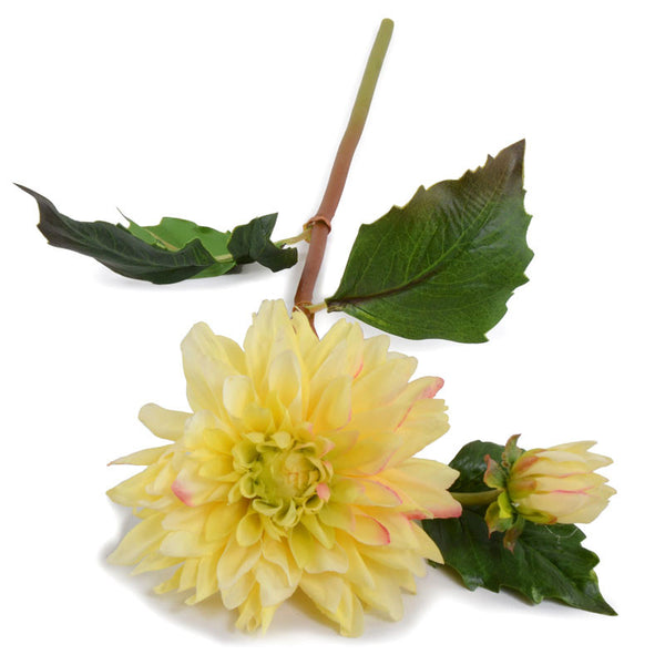 Dahlia Flower Stem - New Growth Designs