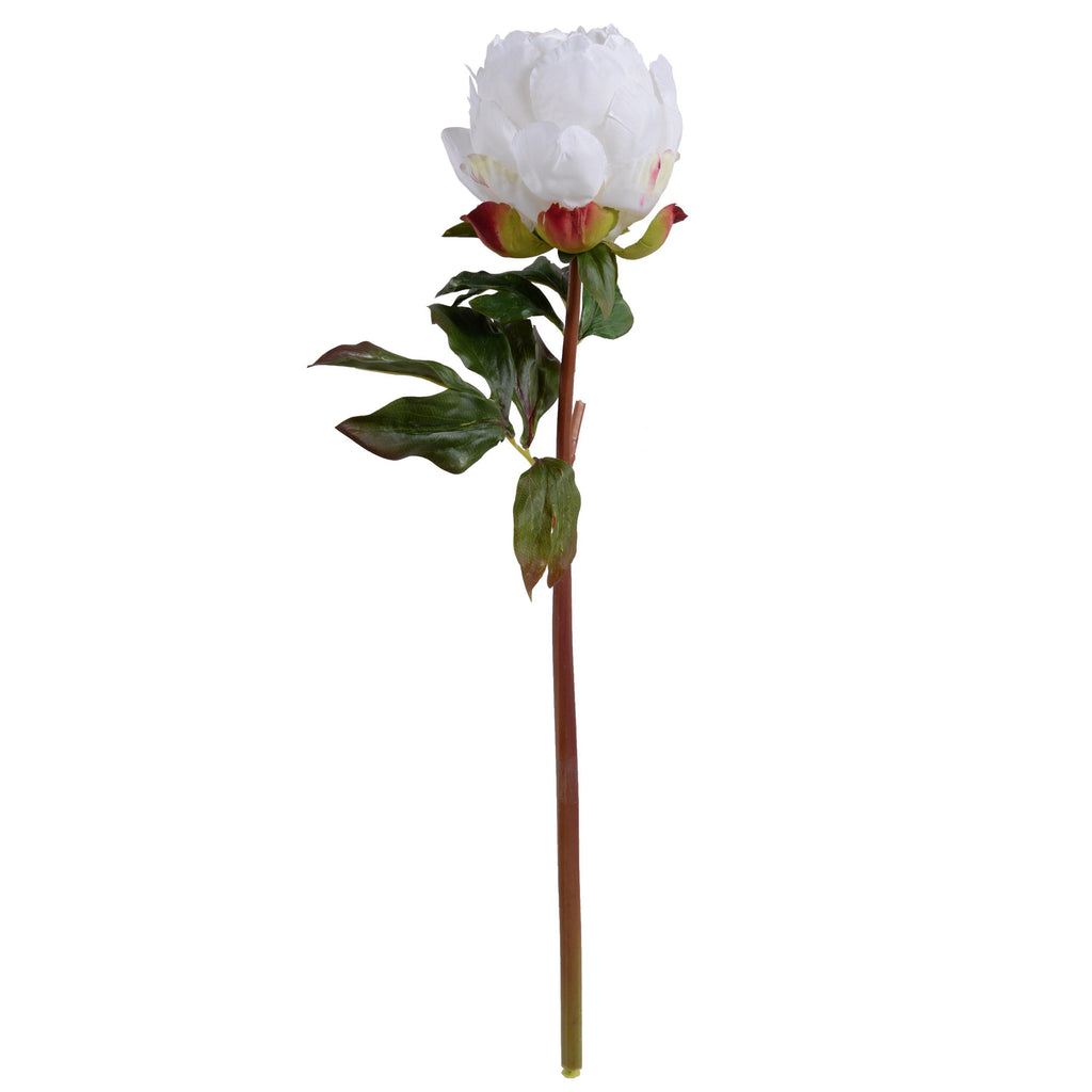 "Peony Stem with Leaves, 22"" - New Growth Designs"