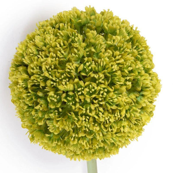 "Allium Flower Stem, 5.5"" diameter - New Growth Designs"