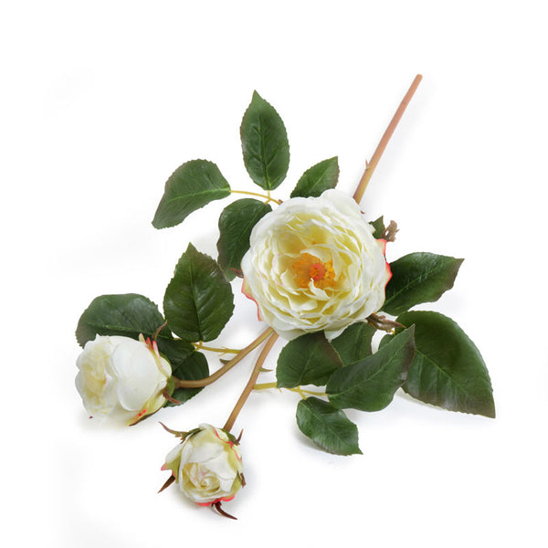 Rose Stem with Buds, White