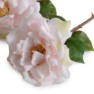 "Rose Stem, 20"" - Light Pink..."