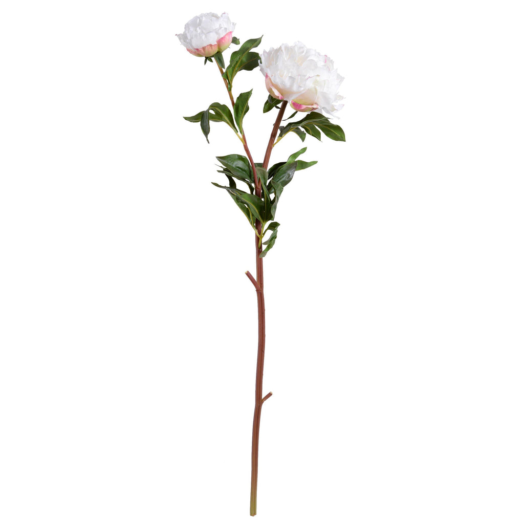 "Peony Stem with Bud & Leaves, 32"" - New Growth Designs"