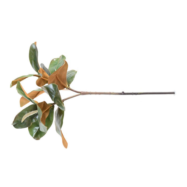 "Magnolia Leaf Spray, 22""L"