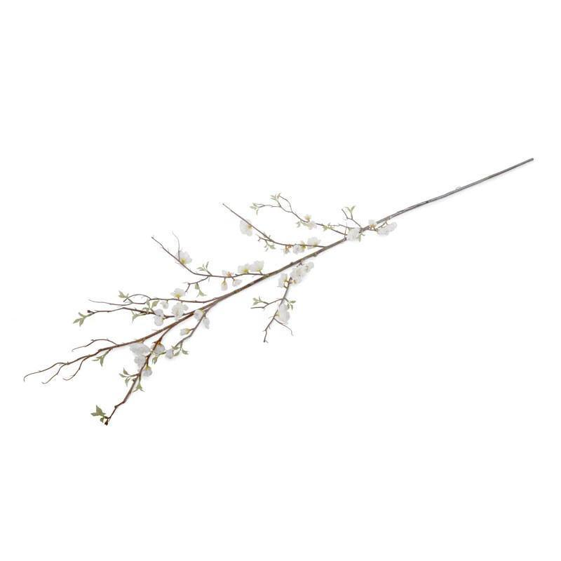 Cherry Blossom Branch - New Growth Designs