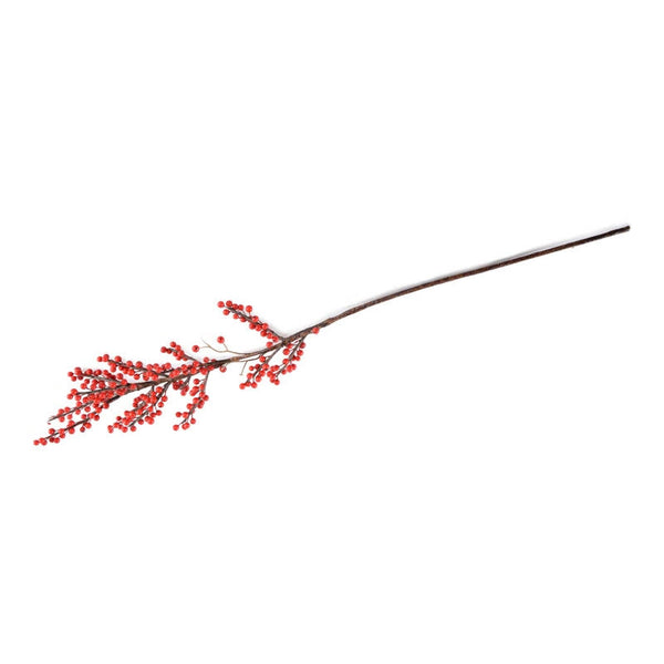 Berry Branch, Winterberry
