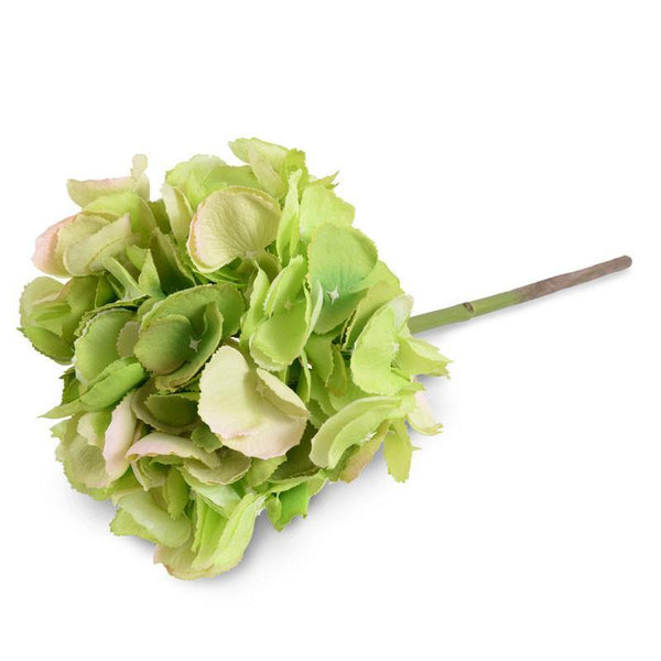 Hydrangea Flower Stem - New Growth Designs