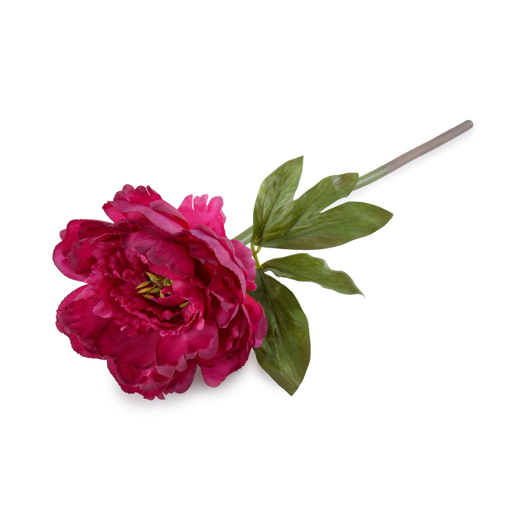 "Peony Stem with Leaves, 18"" - Beauty - New Growth Designs"
