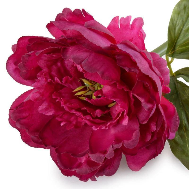 "Peony Stem with Leaves, 18"" - Beauty"