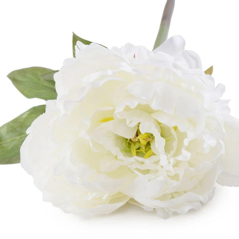 "Peony Stem with Leaves, 18"" - White"