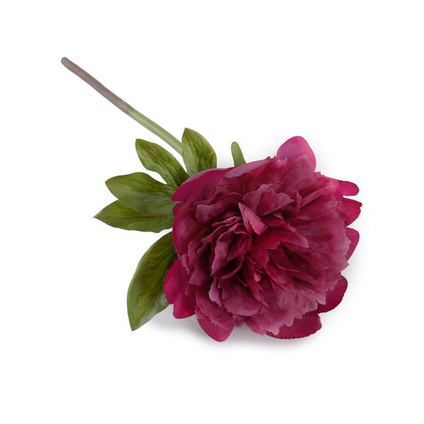 Peony Stem with Leaf