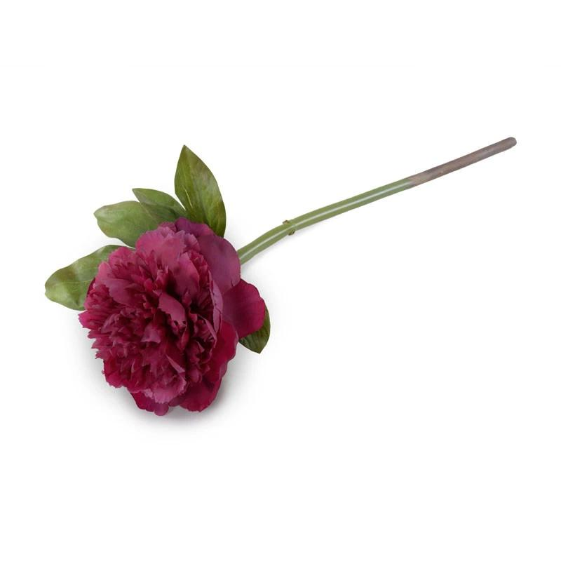 Peony Stem with Leaves, 18""
