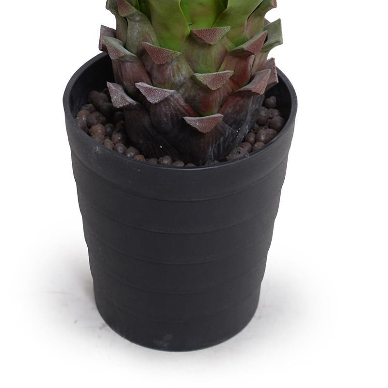 "Agave Americana Plant in Tall Round Pot, 32""H"