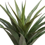 "Agave Americana Plant in Square Pot, 28""H"