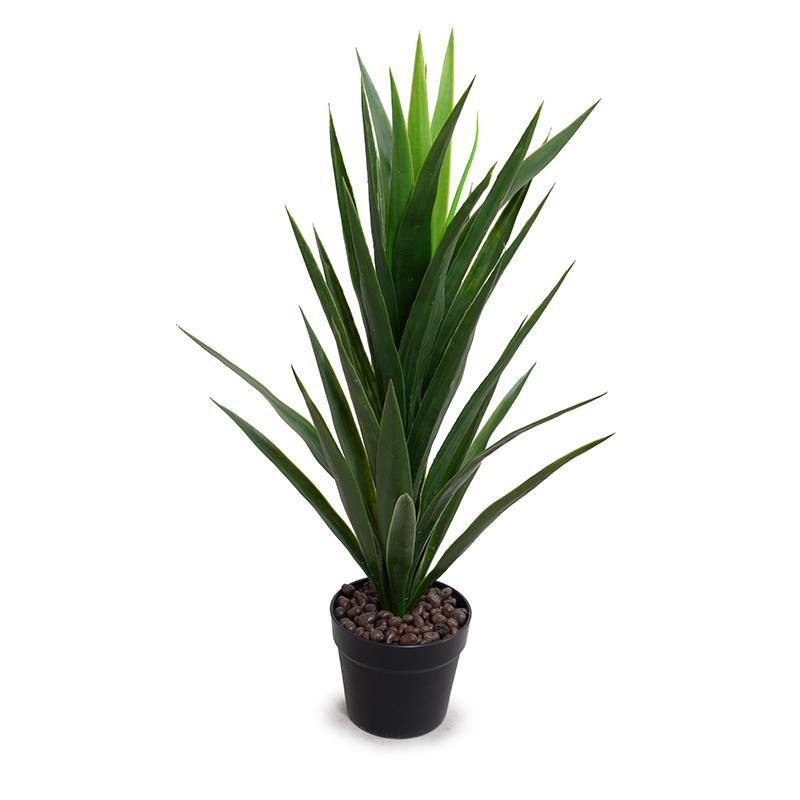 "Yucca Plant in Round Pot, 30""H"