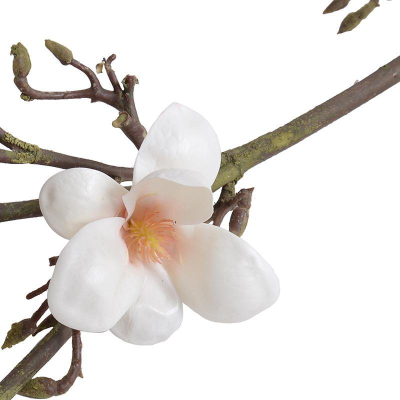 "Magnolia Tree Branch, 60"" L - New Growth Designs"