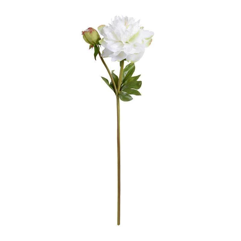 "Peony Stem with Bud & Leaves, 28"" - New Growth Designs"