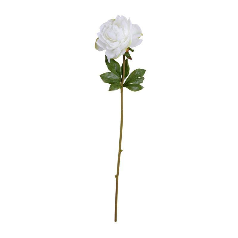 "Peony Stem with Leaves, 28"" - New Growth Designs"