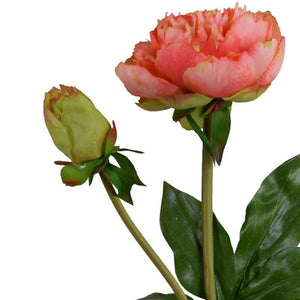 Peony Stem with Bud & Leaves, 28""