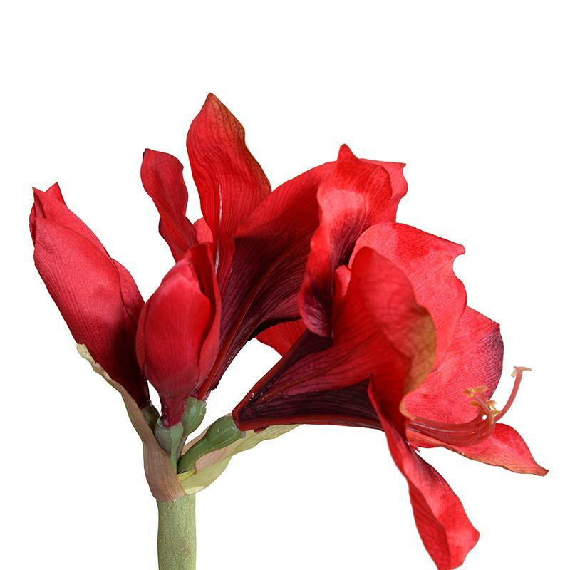 "Amaryllis Stem, 27"" - Red"