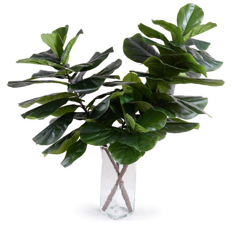 Fiddle Leaf Fig Branches - New Growth Designs