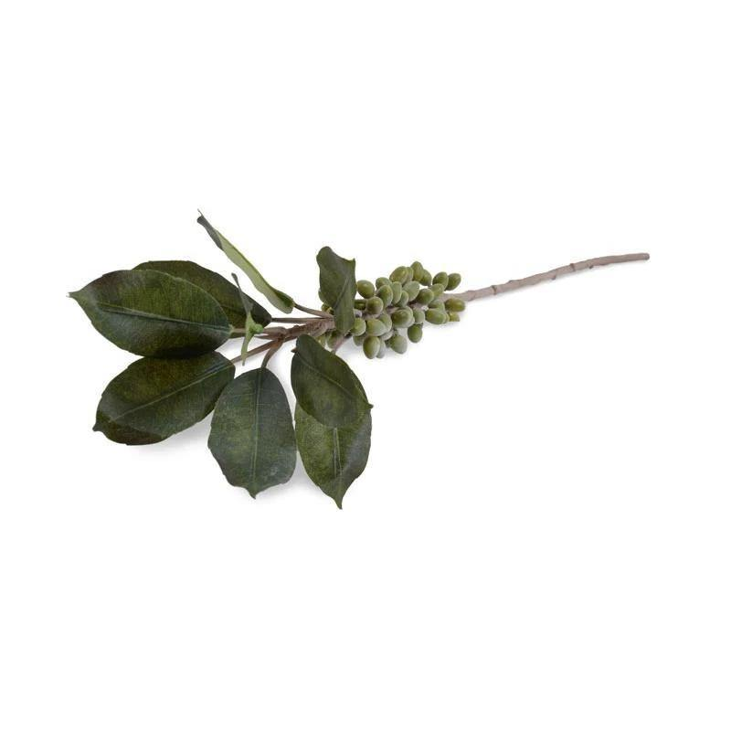 Coffee Berry Branch - New Growth Designs