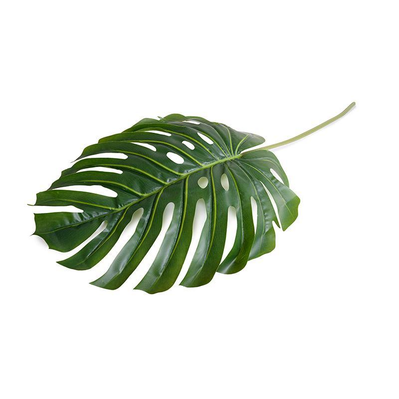 "Monstera Leaf, 52"" L"