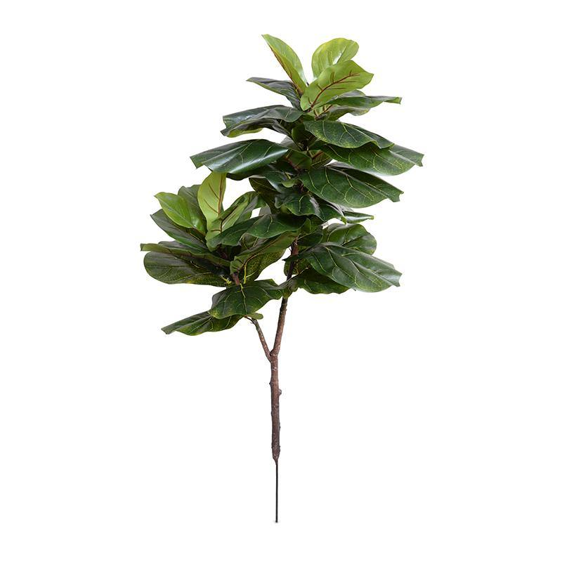 "Fiddle Leaf Fig Branch, 48"" L"