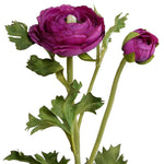 Ranunculus Spray - Fuchsia