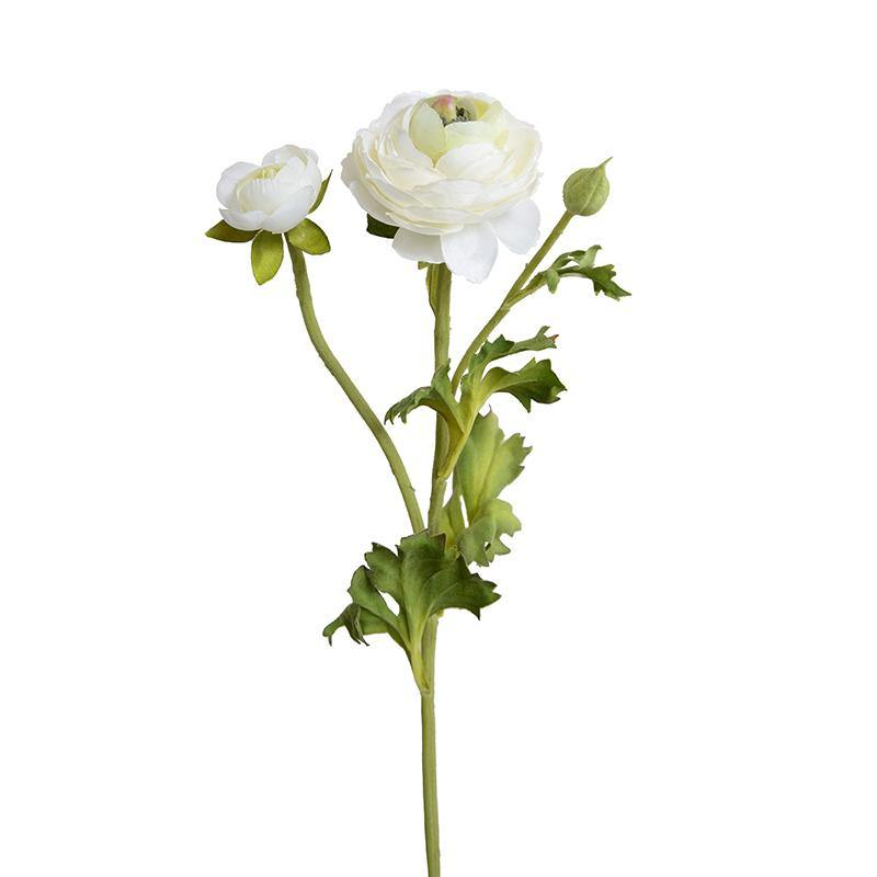 Ranunculus Spray - White