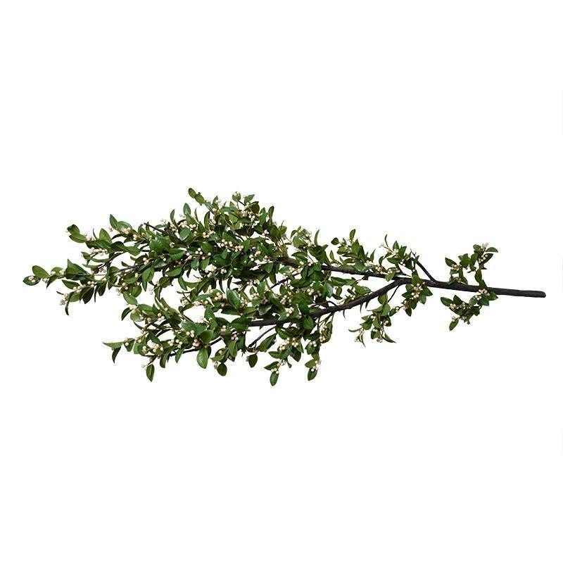 Holly Branch with White Berries, 68""