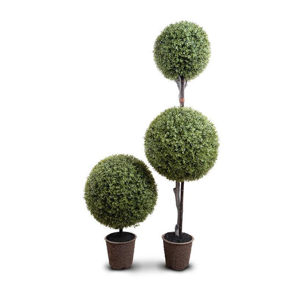 Boxwood Ball Custom-made Topiary - New Growth Designs