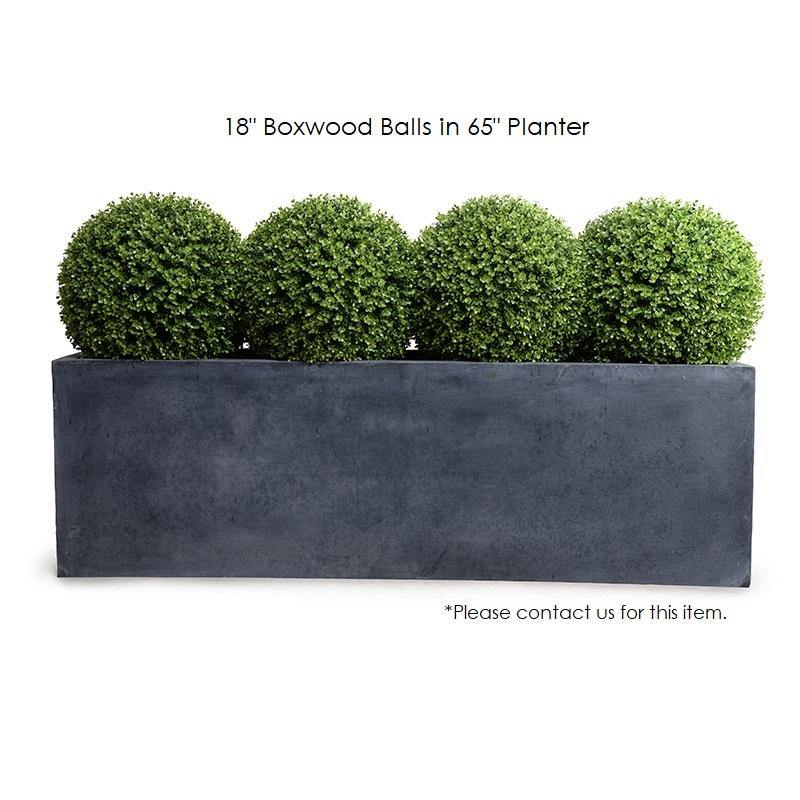 "18"" Boxwood Ball, Case of 2 - New Growth Designs"